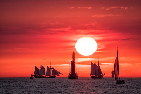 Sailing ships on the Hanse Sail - INGF01410