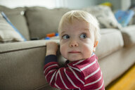 Close-up of cute baby boy looking away while sitting by sofa at home - CAVF49349