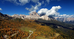 Rocks and forest at the Dolomites in Italy - LUXF01157