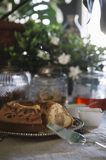 Marble cake on the buffet of a luxury brunch - ALBF00620