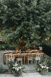 Festive laid table with candles under a tree - ALBF00702