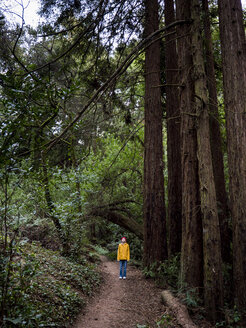 Full length of boy standing on dirt road amidst trees in forest - CAVF49976