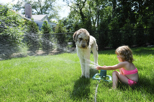 Side view of playful girl spraying water on dog with sprinkler at yard - CAVF50445