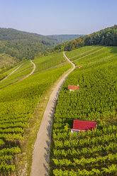Germany, Baden-Wurttemberg, Aerial view of vineyards At Gundelsbach Valley - STSF01766