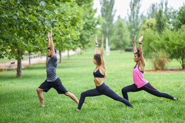 Young people exercising yoga in a park - JSMF00530