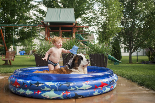 Shirtless baby boy pouring water on dog while standing in wading pool at yard - CAVF50639