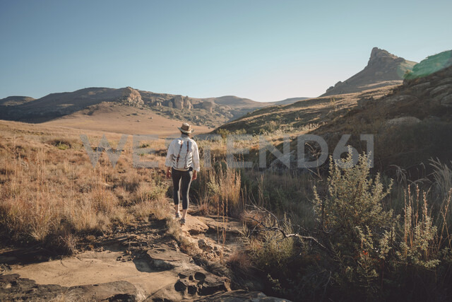 Rear view of hiker with backpack walking on field against clear sky during sunny day - CAVF51014 - Cavan Images/Westend61