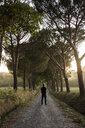 Rear view of man standing on road amidst trees - CAVF51052