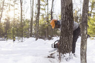 Lumberjack cutting tree trunk in forest during winter - CAVF51431