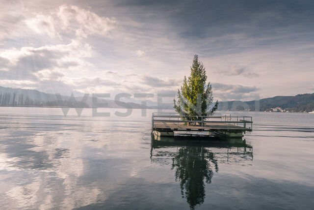 Christmas tree in the middle of a lake - INGF03802