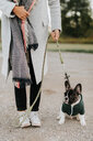 Woman with puppy on lead - CUF46336