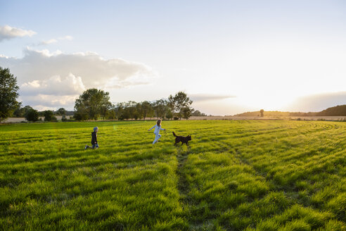 Two children with a dog running over a field at sunset - OJF00268
