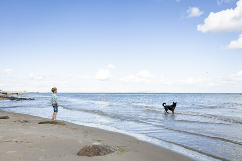 Boy with dog at the beach - OJF00280