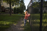 Side view of baby boy looking through chainlink fence at backyard - CAVF51560