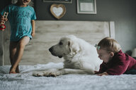 Siblings playing with Great Pyrenees sitting on bed at home - CAVF51965