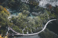 High angle view of footbridge over river amidst trees - CAVF52205