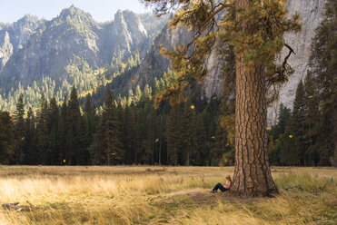 Side view of woman relaxing by tree on grassy field at Yosemite National Park - CAVF52331