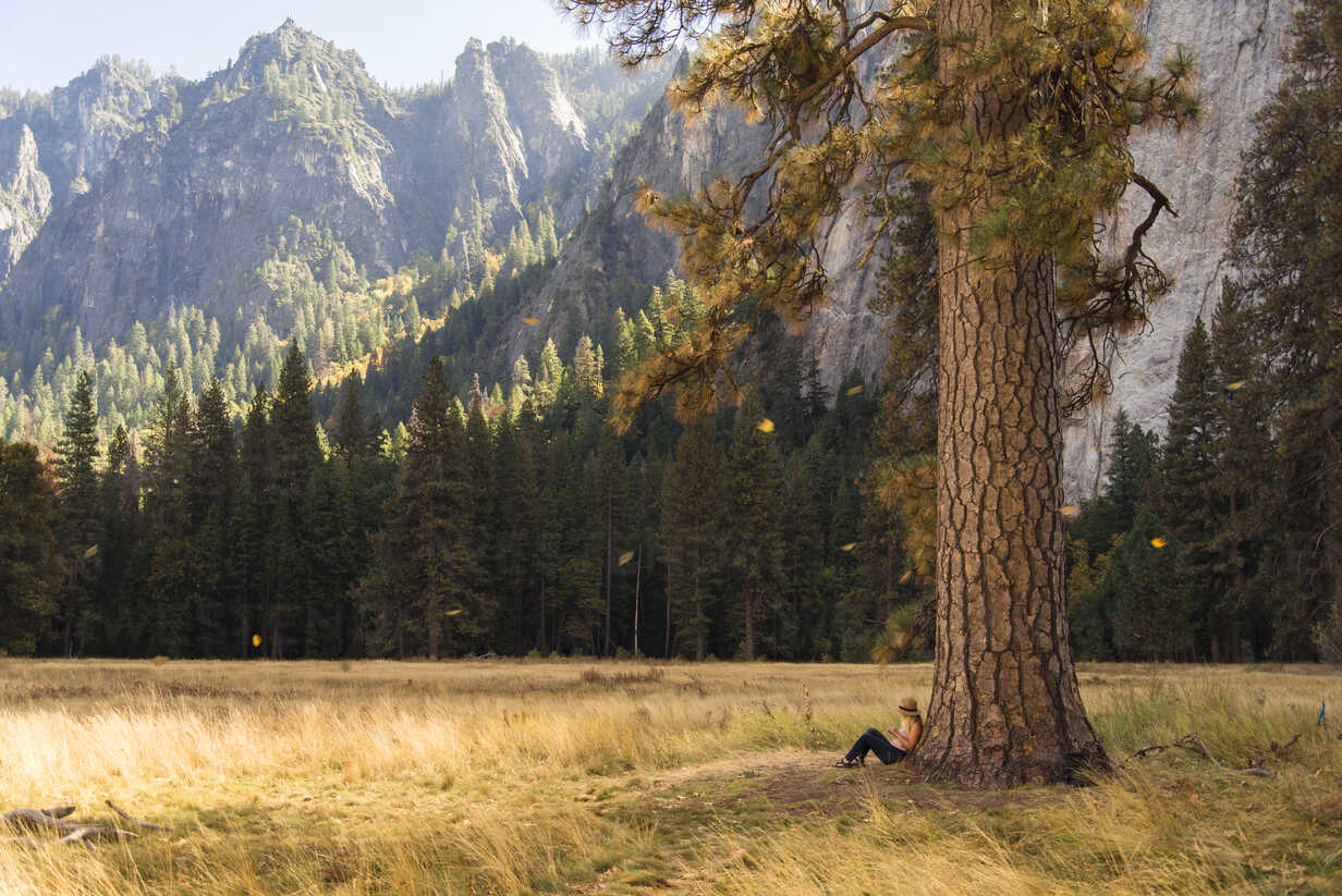 Side view of woman relaxing by tree on grassy field at Yosemite National Park - CAVF52331 - Cavan Images/Westend61