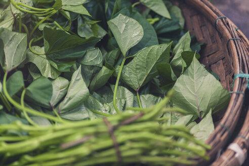 Vietnam, fresh vegetables and herbs in basket - MMAF00661
