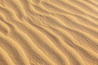 Detail of sand dune - MMAF00676