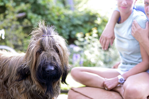 Portrait of dog with hair clip in the garden - BFRF01925