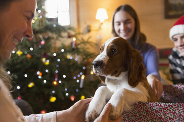 Family with puppy dog in Christmas gift box - HOXF03950