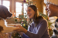Happy brother and sister playing with dog in Christmas living room - HOXF03962