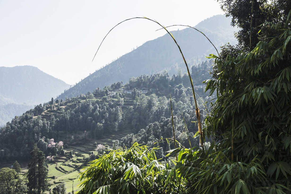Sunny scenic view, Supi Bageshwar, Uttarakhand, Indian Himalayan Foothills - HOXF04151 - Martin Barraud/Westend61