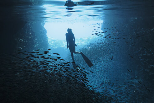 Woman snorkeling underwater among schools of fish, Vava'u, Tonga, Pacific Ocean - HOXF04154