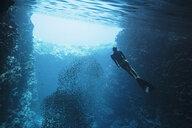 Young woman snorkeling underwater among school of fish, Vava'u, Tonga, Pacific Ocean - HOXF04157