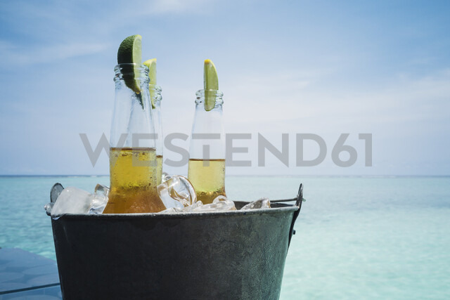 Lime slices in beer bottles on ice on tranquil ocean beach, Maldives, Indian Ocean - HOXF04169 - Martin Barraud/Westend61