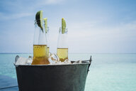 Lime slices in beer bottles on ice on tranquil ocean beach, Maldives, Indian Ocean - HOXF04169