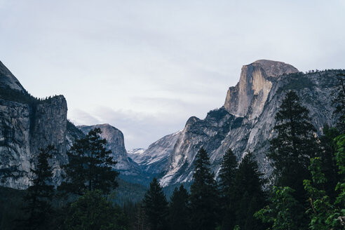 Idyllic view of trees growing in forest by mountains against sky at Yosemite National Park - TGBF00409