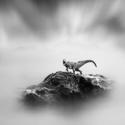 A toy dinosaur on a stone, black and white, long exposure - XCF00178