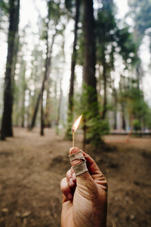 Cropped image of hand holding burning matchstick against trees in forest - TGBF00590