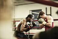 Side view of male boxers practicing in boxing ring at health club - TGBF00671