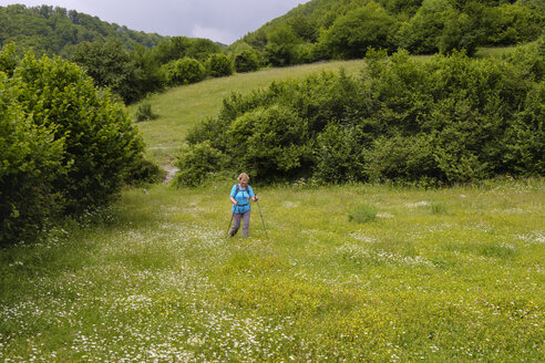 Albania, Shkoder County, Albanian Alps, Theth National Park, female hiker walking over flower meadow - SIEF08092