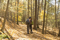 Couple kissing in forest during autumn - TGBF00894