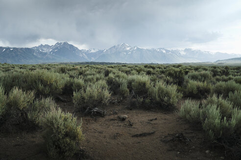 View of desert and mountains, Mammoth Lakes, CA - TGBF00930