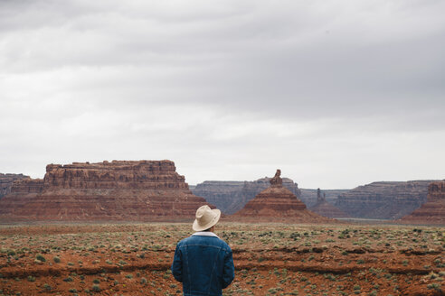 Rear view of young male tourist looking at stunning Monument Valley against sky - TGBF01023
