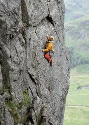 United Kingdom, Lake District, Langdale Valley, Gimmer Crag, climber on rock face - ALRF01356