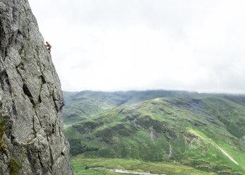 United Kingdom, Lake District, Langdale Valley, Gimmer Crag, climber on rock face - ALRF01359