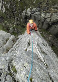 England, Langdale Valley, Gimmer Crag, female climber on rock - ALRF01362