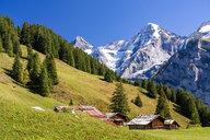 Switzerland, Bernese Oberland, Birg, Blumental near Muerren - STSF01781