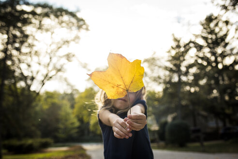 Playful girl covering face with maple leaf during autumn at park - CAVF52948