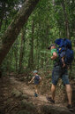 Father with children hiking at forest - CAVF53041