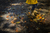 Low section of playful girl wearing boots while jumping in puddle on road during autumn - CAVF53055