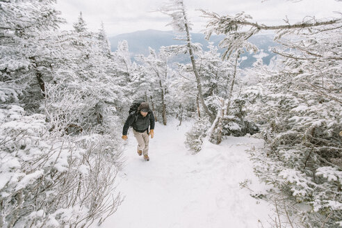 Full length of hiker walking in forest during winter - CAVF53088