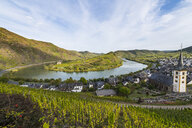 Germany, Rhineland-Palatinate, Vineyards above Bremm on the Moselle river - RUNF00135