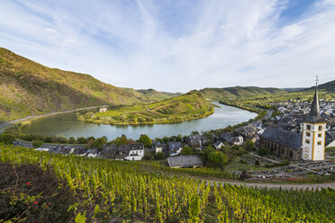 Germany, Rhineland-Palatinate, Vineyards above Bremm on the Moselle river - RUNF00135